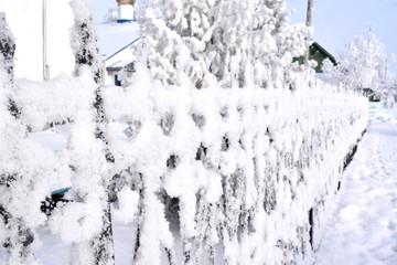 старинный кованный забор, покрытый снегом в ясный солнечный день. Россия