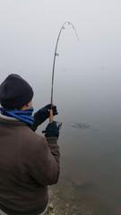 pescatore al laghetto cattura un pesce