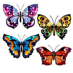 multicolored butterflies set