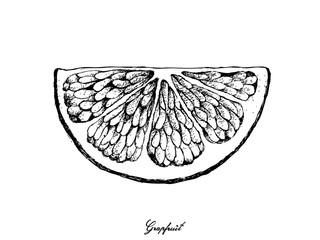 Hand Drawn of Grapefruit Fruit on White Background