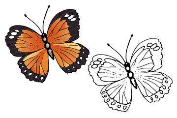 Butterfly coloring set - vector illustration