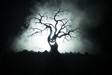 Silhouette of scary Halloween tree with horror face on dark foggy toned background with moon on back side. Scary horror tree with zombie and demon faces.