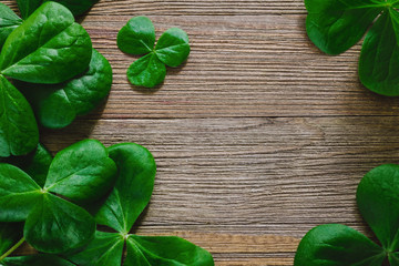 Shamrocks with Room for Copy