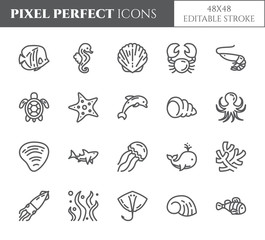 Marine theme pixel perfect thin line icons. Set of elements of fish, shell, crab, shark, dolphin, turtle and other sea creatures related pictograms. Vector illustration. 48x48 pixels. Editable stroke