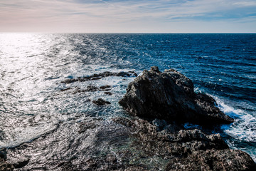 Sur les Iles du Gaou à Six-Fours-les-Plages, le Brusc