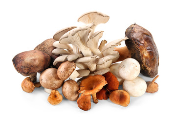 Variety of raw mushrooms on white background