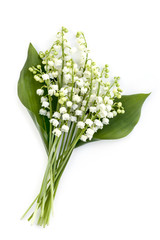 Fotobehang Lelietje van dalen Lily of the Valley Isolated on White