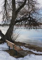 Park Bench Overlooking Frozen Lake at Sunrise