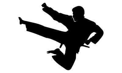 silhouette of karate kicking