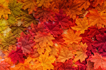 autumn leaf on old white vintage wooden texture floor with free copy space for your ideas texts