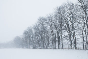 Midwestern winter landscape in January or February with frost and natural beauty outdoors.