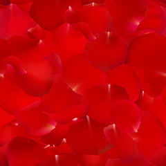 Seamless pattern background with red rose petals. Flowers vector illustration.