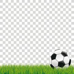 Football Grass Transparent