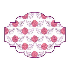 decorative label flowers pattern delicate seamless leaves vector illustration pink image