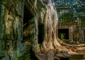 Details of decoration in ancient temple of Angkor Wat in Cambodia
