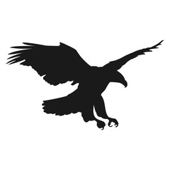 flying eagle vector illustration black silhouette