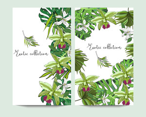 Vertical banners with exotic tropical flowers and leaves on white background.