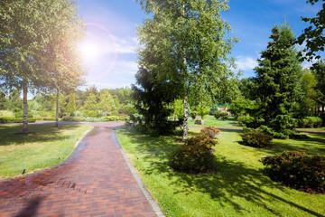 Summer green city park at sunny day