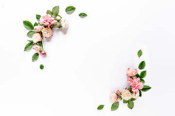 Border frame with pink rose flower buds branches isolated on white background. Flat lay, top view. Floral background. Floral frame. Frame of flowers.