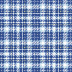 Blue plaid seamless pattern. Vector background eps10