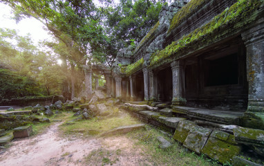 Ancient stone ruins of Ta Prohm temple, Angkor, Cambodia