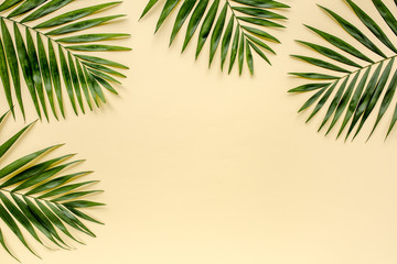 Tropical green palm leaf branches isolated on yellow background. the apartment lay, top view