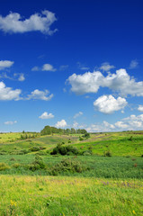 Sunny summer landscape with green hills and growing trees.Blue sky with beautiful clouds over the fields and meadows.