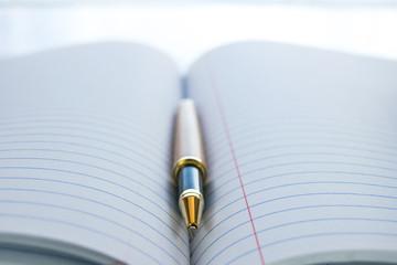 Open pen lying in a journal