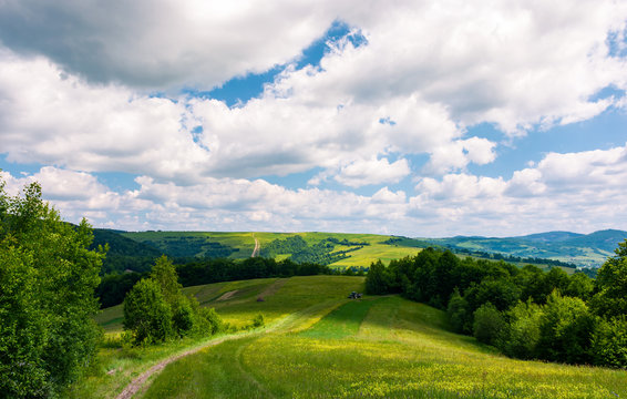 beautiful countryside of Carpathians in summer. country road through rural fields leads in to the forest. landscape with rolling hills under the cloudy sky