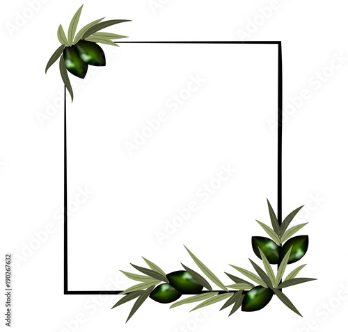 vector frame with olive branch..\
