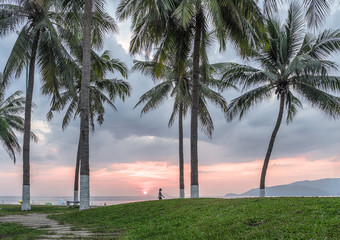 Vietnam. Nha Trang. Early morning. High palm trees and silhouette of a man walking along the beach against the backdrop of the rising sun.