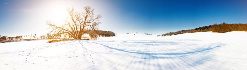 snow field at sunny day