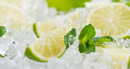 Wall Mural - Ice and lime fruits.