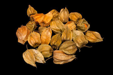 Physalis peruviana (Cape gooseberry, goldenberry) isolated on a black background