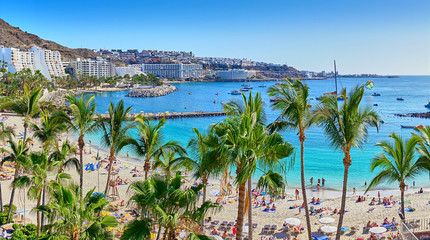 Anfi beach with palm trees / Island of Gran Canaria, Spain