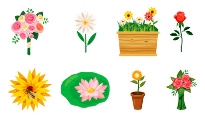 Flower icon set, cartoon style