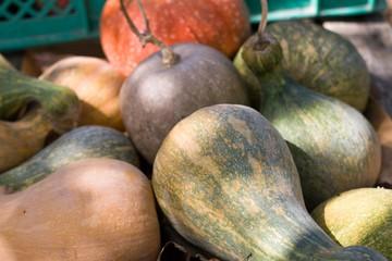 Natural home-made bio pumpkins