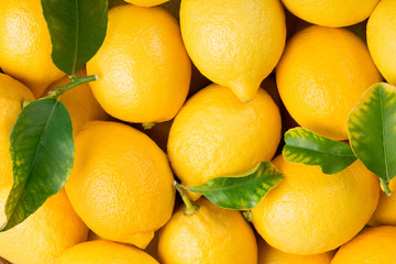 Wall Mural - Background of lemon fruits.
