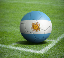 Soccer ball ball with the national flag of ARGENTINA ball with stadium