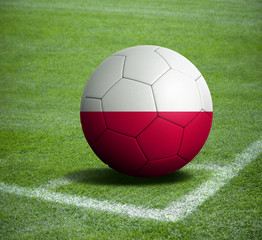 Soccer ball ball with the national flag of POLAND ball with stadium
