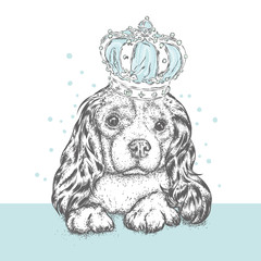 Beautiful dog in the crown. Cute Spaniel. Purebred puppy. Vector illustration for a postcard or a poster, print for clothes and accessories. A princess.