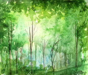Watercolor illustration, dark, dense forest. A set of pictures. Seasons. Summer, spring, autumn landscape. Abstract spots of green, yellow. Park, forest, grove, trees.
