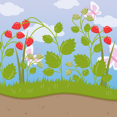 Strawberry field, green background with ripe berries vector illustration, cartoon style