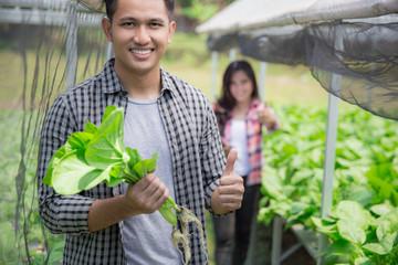 male farmer in modern hydrophonic farm
