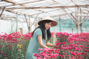 young asian woman working in chamomile flowers farm