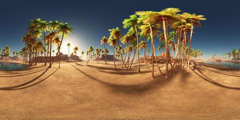 360 Grad Panorama mit einer Wüstenoase und Palmen