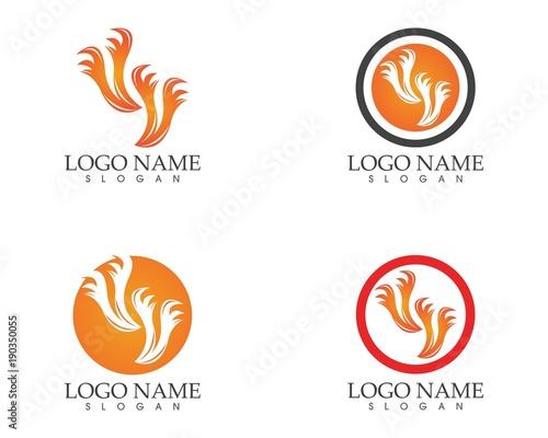 Fire flame logo design template\