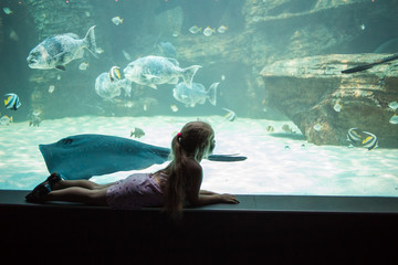 Close up view of a young girl enjoying the sights of fish swimming in an aquarium