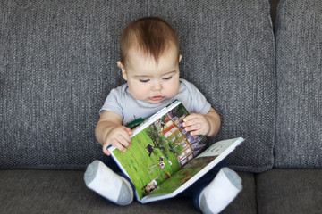 Cute little baby boy sitting on grey sofa with an open  book in his arms looking at the picture of cows in book.