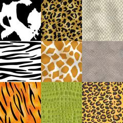 Animal skin pattern seamless vector animalistic skinny textured background of wild skinning natural fur illustration wildlife backdrop set